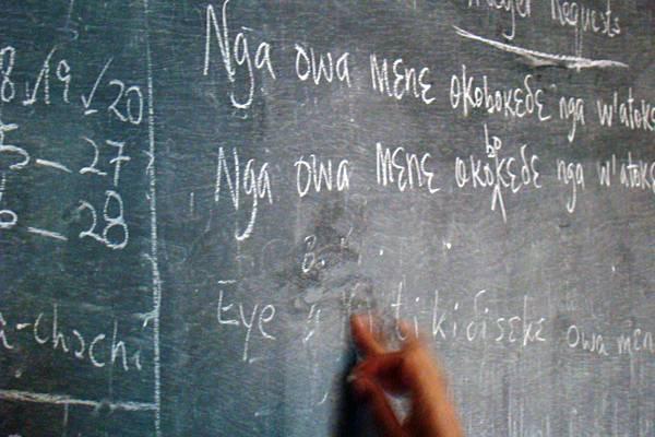 Educator+at+Rain+Forest+International+School-Cameroon